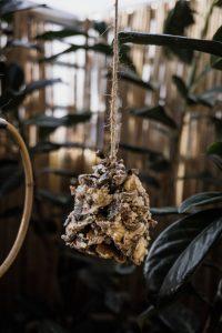 Vogelfutterspender für den Balkon