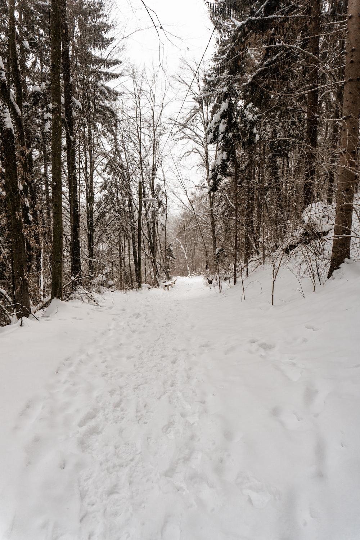 Hausbergwanderung im Schnee