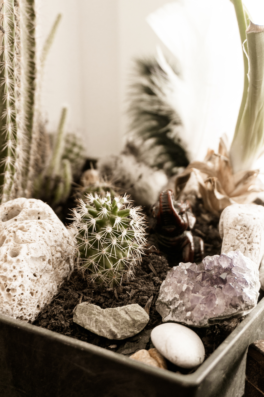 Mein Meditation Space