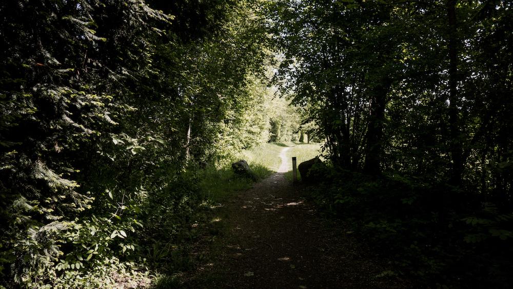 Leibnitzer Wanderroute #1