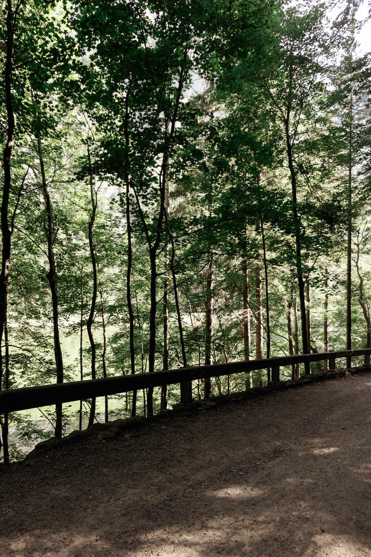 Ein gelungener Wander- und Badetag am Leopoldsteinersee
