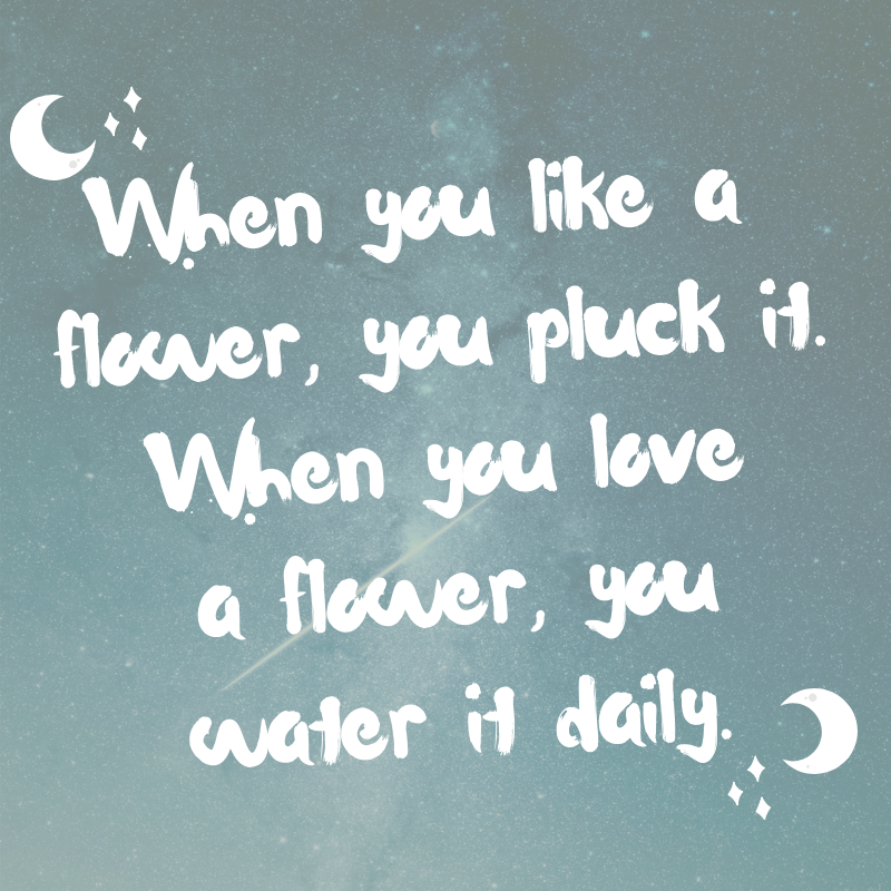 When you like a flower, you pluck it. When you love a flower, you water it daily