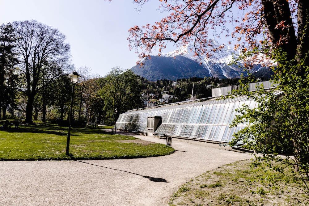 Palmenhaus Innsbruck