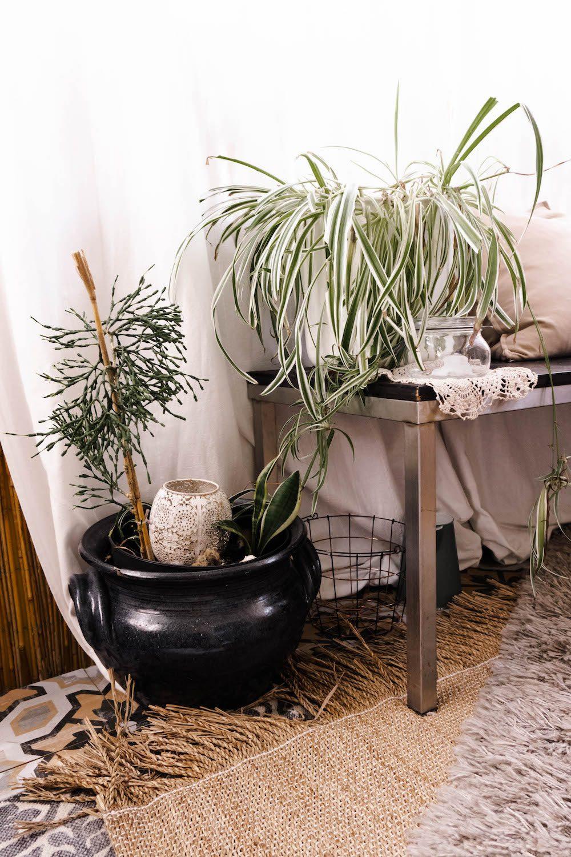Pflanzen und Töpfe im Boho Style