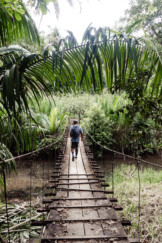 Die Pazifikküste Costa Rica's rauf und runter - Hängebrücke Corcovado