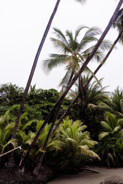 Eine Woche in Costa Rica