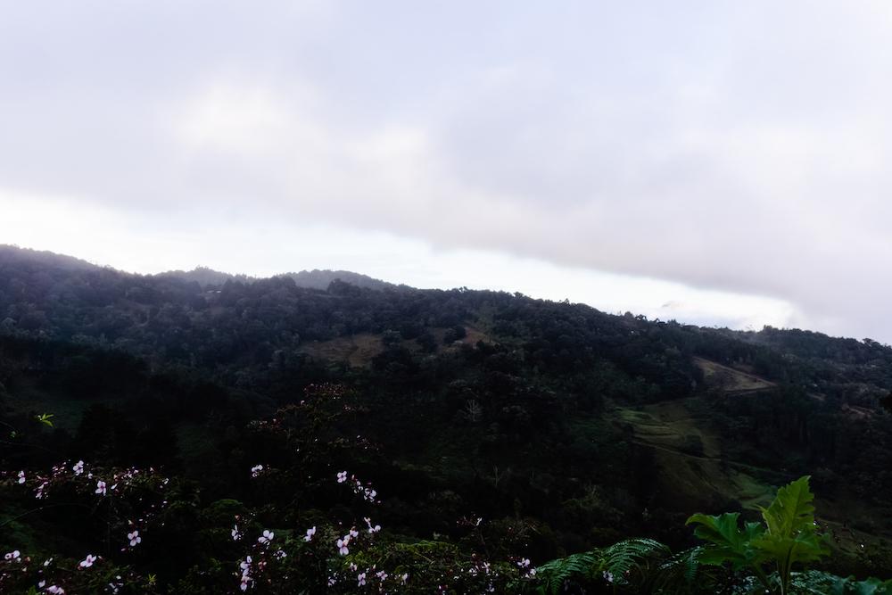 Eine Woche in Costa Rica - Dota Hochland
