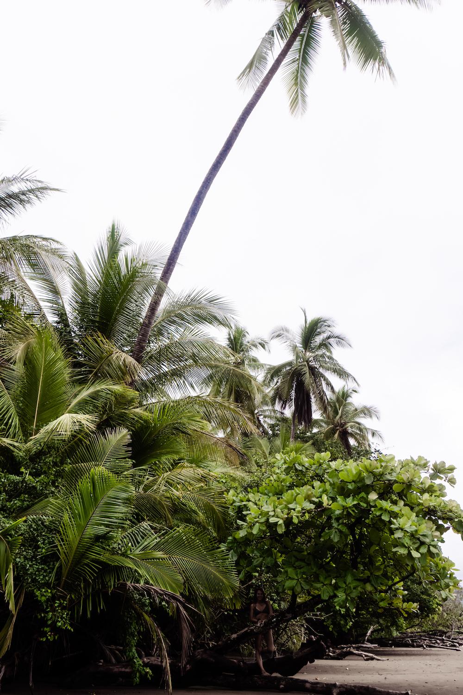Die Pazifikküste Costa Rica's rauf und runter  - Uvita