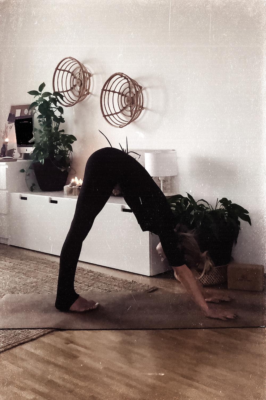 Beginner Yoga Flow