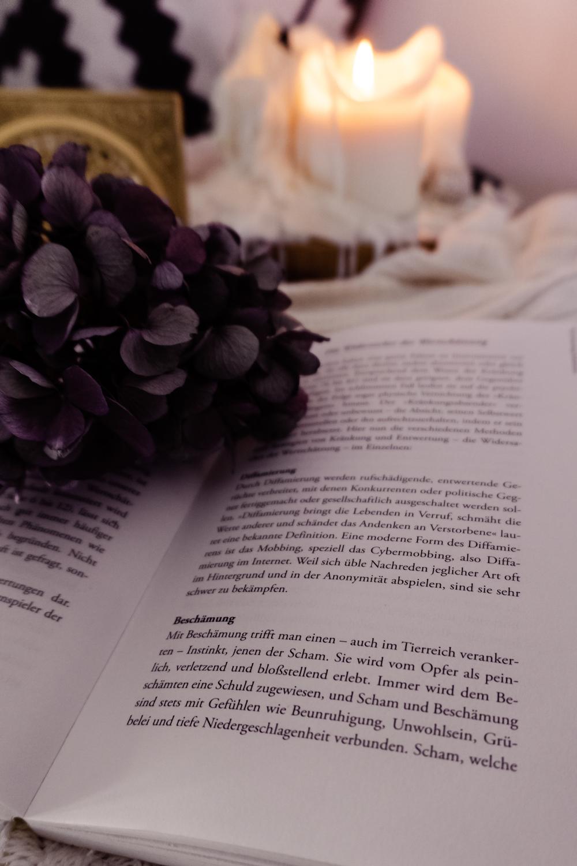 Slow Down Morning - Bücher und Lesen