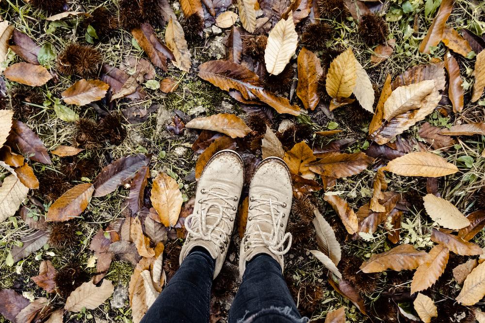 Wanderausstattung für den Herbst - Wanderschuhe von Toms