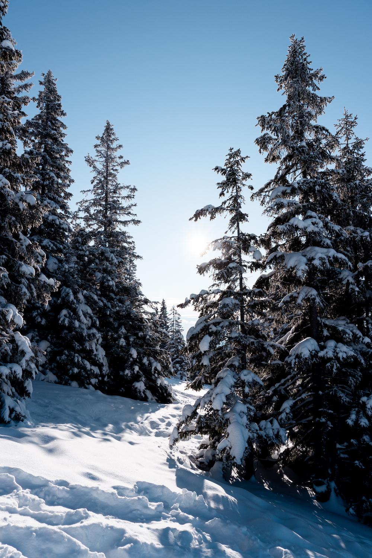 Dem Winter eine Chance geben