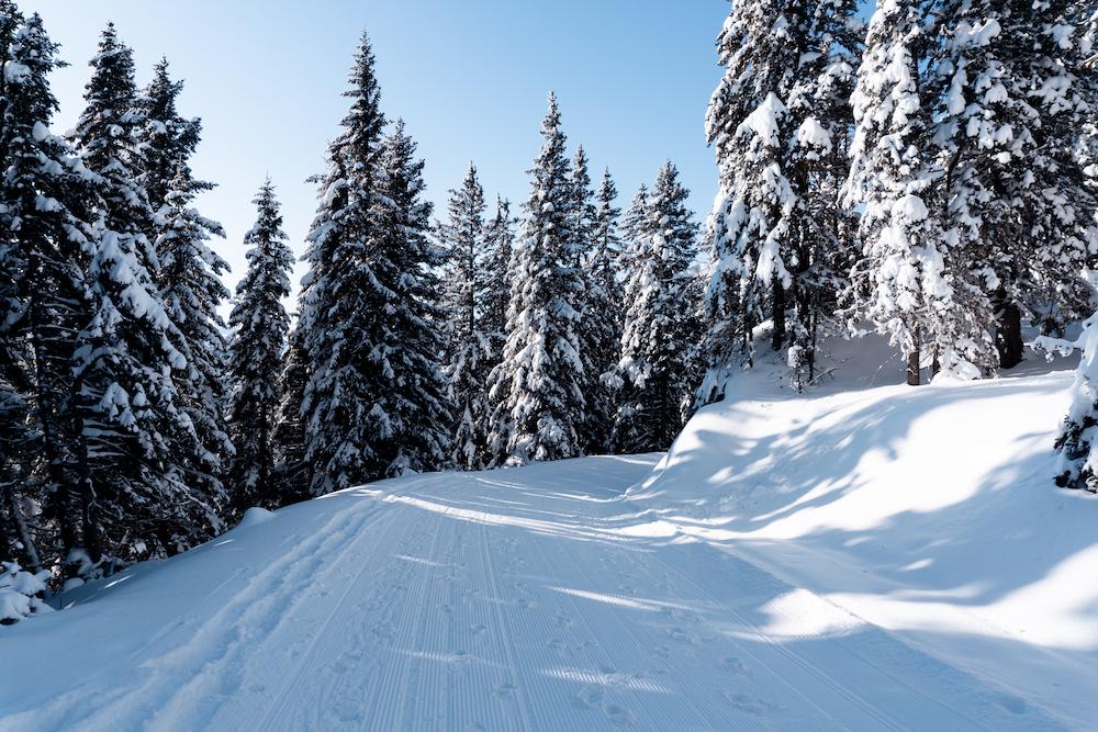 Schneewandern Steiermark