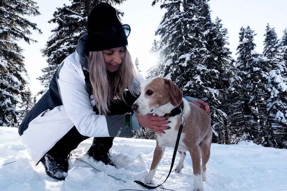 Wandern mit Hund im Schnee