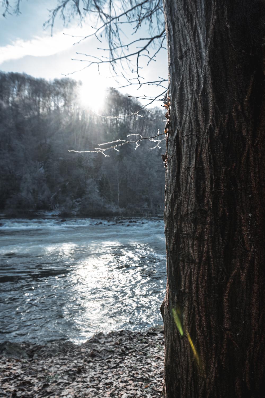 Wintertag am Wasser