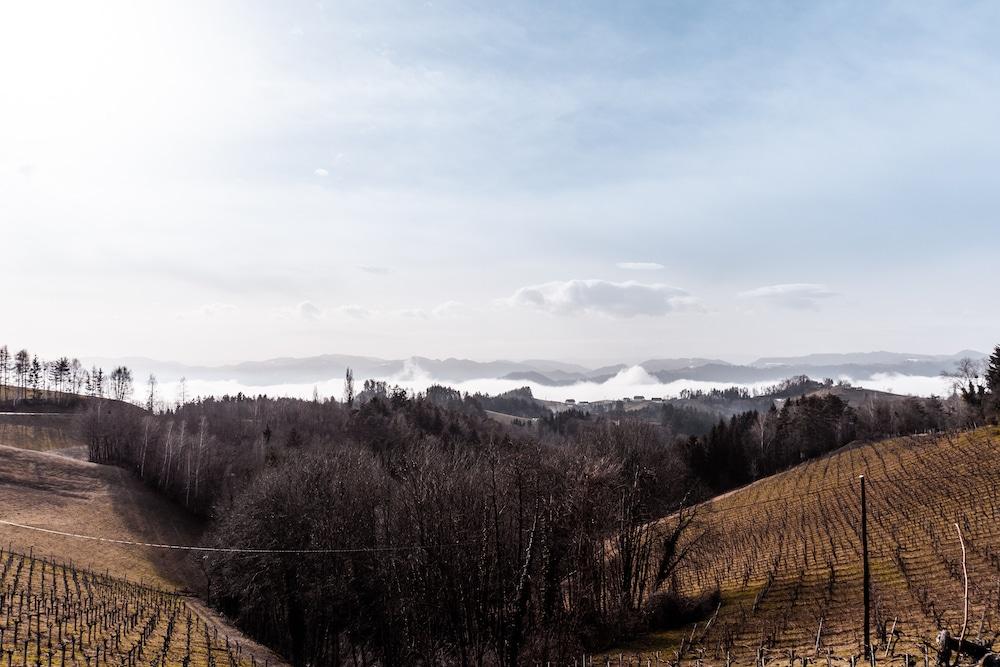 Südsteirische Weinstraße Leutschach