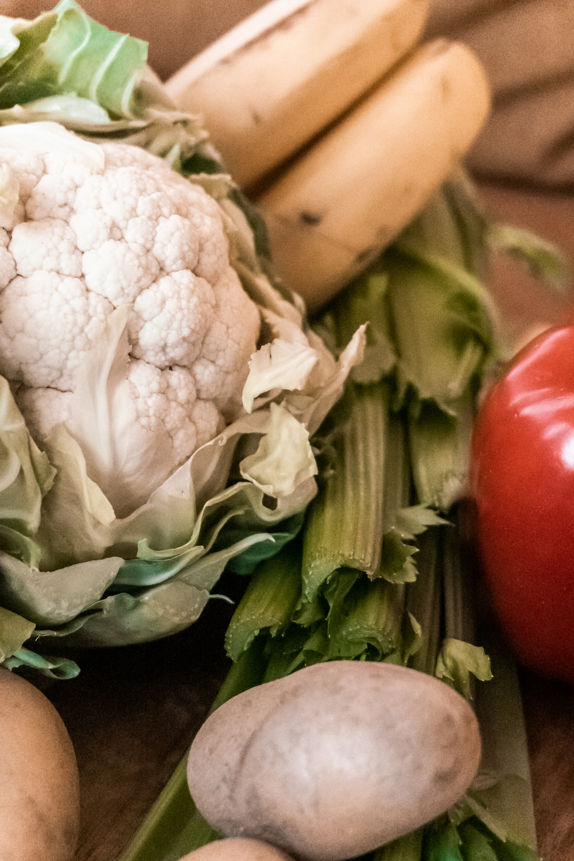 14 kritische Nährstoffe in unserer Ernährung