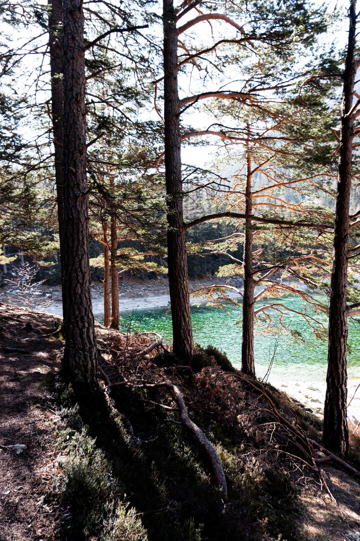 Wanderung zum Grünen See