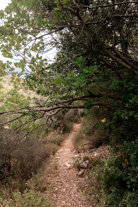 Wanderweg Skiathos